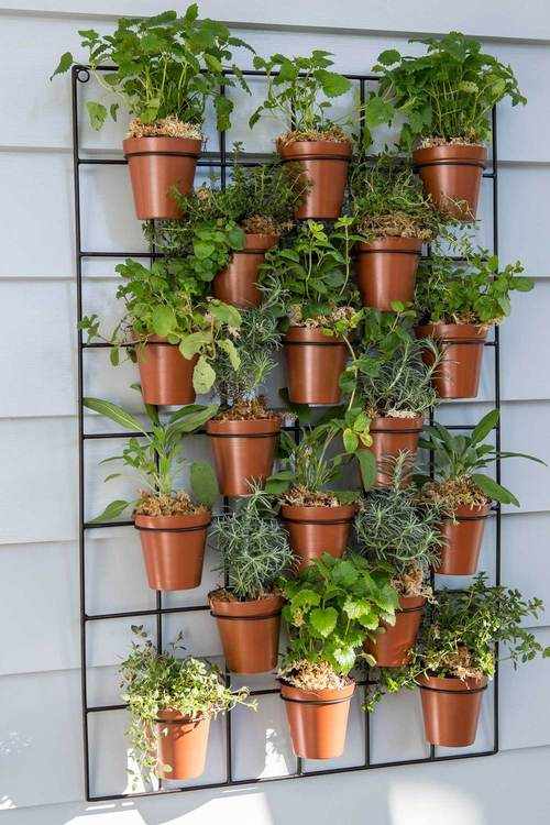 Wall Pot Planter