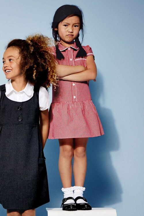 Next Drop Waist Gingham Dress (3-14yrs)