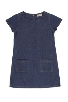 Next Denim Shift Dress (3-7yrs)