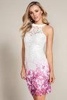 Lipsy Ombre Cutout Lace Dress