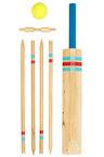 Great Garden Game Co. Cricket Set