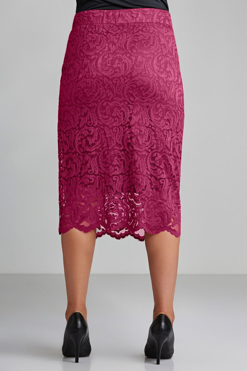 Sara Stretch Lace Skirt