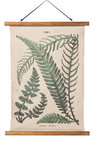 Tobias Botanical Print