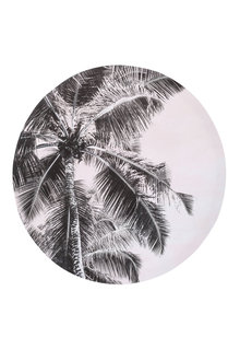 Stoneleigh and Roberson Naleen Palm Canvas