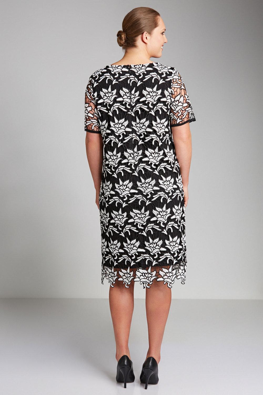 cd2de31cf32f Plus Size - Sara 2 Tone Lace Shift Dress
