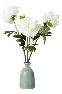 Stoneleigh and Roberson Faux Peony Set of 3