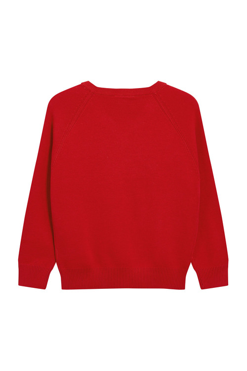 Next Knitted V-Neck Jumper (3-16yrs)
