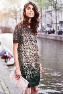 Next Ombre Sequin Dress - 191291