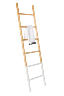 Robertson Towel Ladder