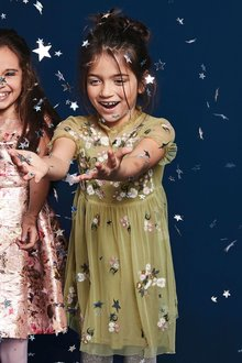 Next Floral Embroidered Dress (3-16yrs)