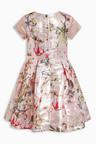 Next Floral Prom Dress (3-14yrs)