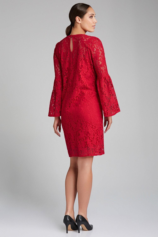 1034a5d7d6 Grace Hill Lace Dress Online | Shop EziBuy