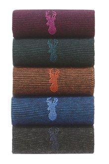 Next Colour Fine Stripe Socks Five Pack