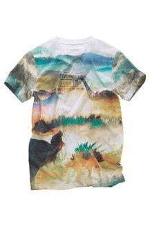 Next Dinosaur T-Shirt (3-16yrs)