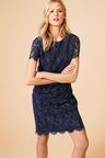 Next Metallic Lace Shift Dress - Tall