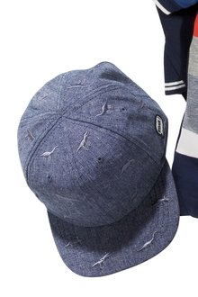 Next Chambray Dinosaur Cap (Younger Boys)