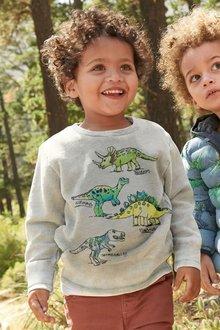 Next Sketchy Dino Long Sleeve T-Shirt (3mths-6yrs)