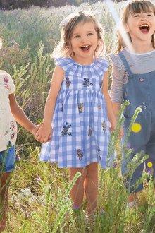 Next Gingham Embroidered Dress (3mths-6yrs)