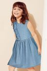 Next Denim Ruffle Dress (3-16yrs)