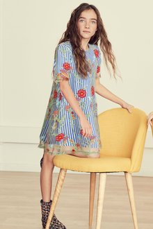 Next Stripe Embroidered Floral Dress (3-16yrs)