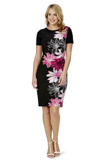Noni B Isolde Placement Print Dress