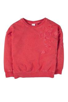 Next Embroidered Sweatshirt (3-16yrs)