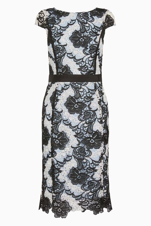 Next Contrast Lace Bodycon Dress