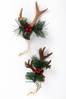 Faux Antler Ornaments Set 2