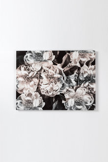 Albertine Canvas