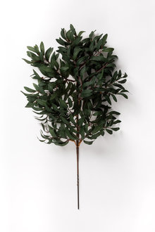 2.5 Foot Olive Leaf Stem