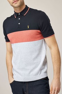 Next Navy/Pink Colourblock Polo
