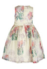 Next Printed Organza Prom Dress (3-16yrs)