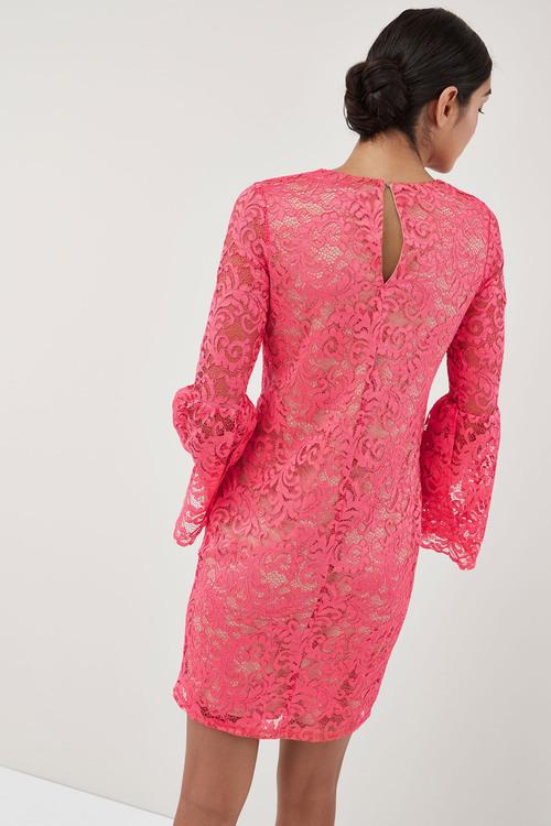 Next Flute Sleeve Lace Dress - Tall