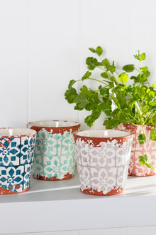 Wax Design Terracotta Plant Pot