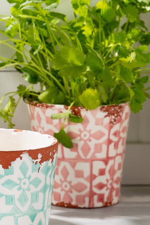 Wax Design Terracotta Plant Pot