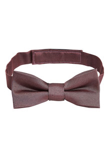 Next Silk Bow Tie (1-16yrs) - 209928