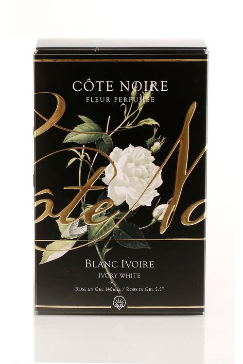 Cote Noire Faux French Rose Diffuser