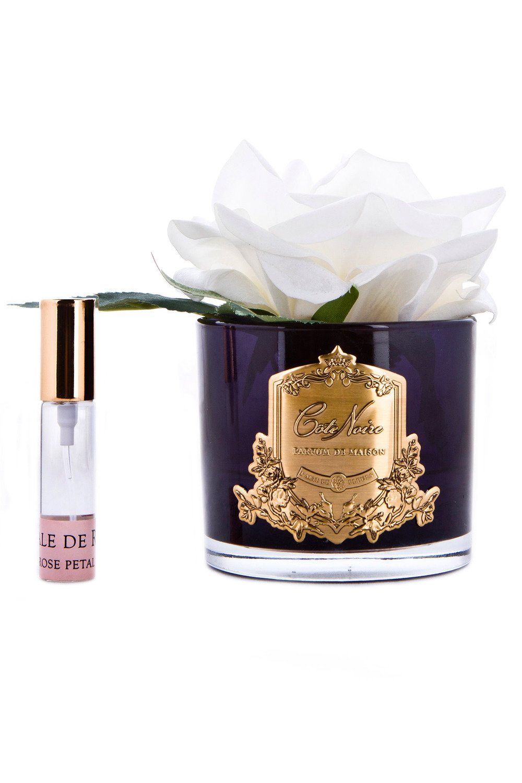 7091294123a Cote Noire Faux French Rose Diffuser Online   Shop EziBuy Home