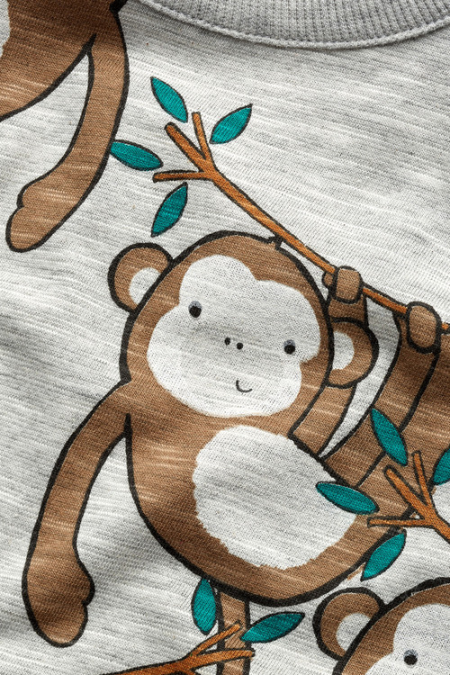 Next Monkey Long Sleeve T-Shirt (3mths-6yrs)