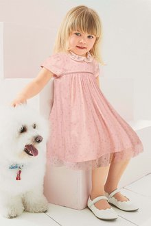 Next Embroidered Collar Dress (3mths-6yrs)