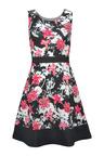 Urban Floral Fit & Flare Dress