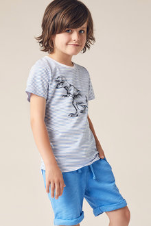 Pumpkin Patch Dino Stripe Tee