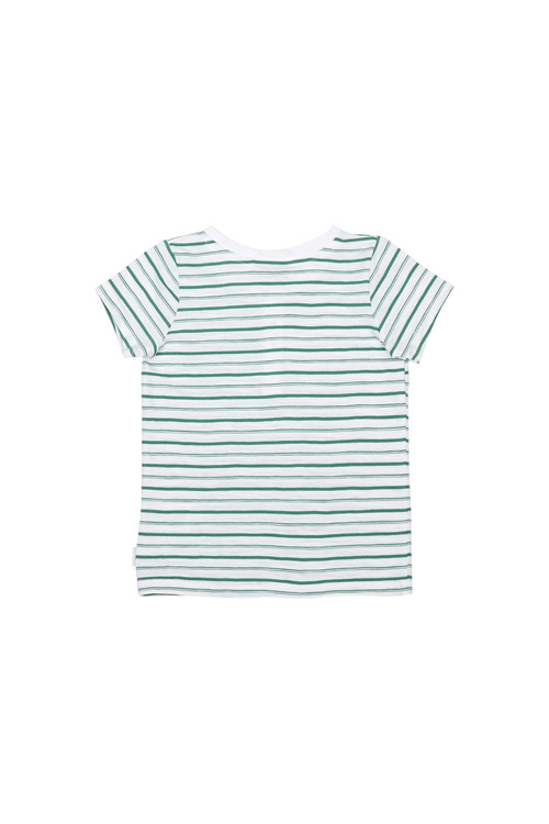 Pumpkin Patch Stripe Henley Tee