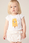 Pumpkin Patch Animal Ice Cream Tee