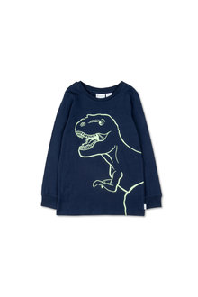 Pumpkin Patch Glow In The Dark Dino PJ Set