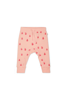 Pumpkin Patch Bunny Head Track Pant