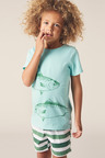 Pumpkin Patch Giant Fish Tee