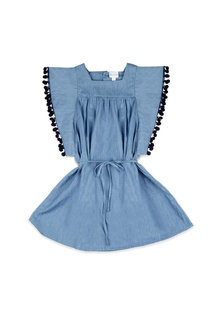 Pumpkin Patch Chambray Frill Dress