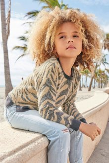 Next Animal Stripe Sweater (3-16yrs)