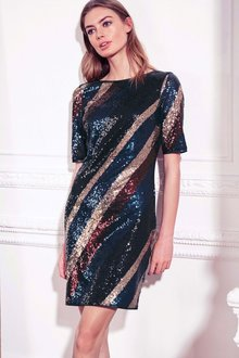 Next Sequin Dress -Tall